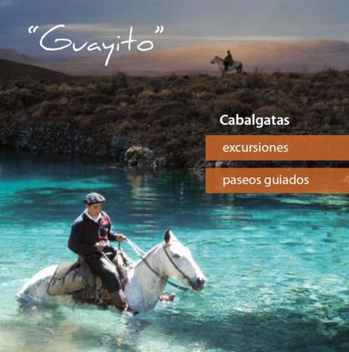 Cabalgatas Guayito